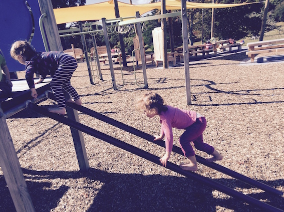Auckland Playgrounds of Concern image 2.jpg