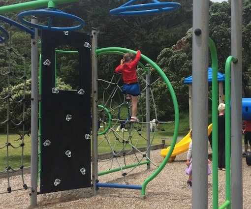 Auckland Playgrounds of Concern image 6.jpg