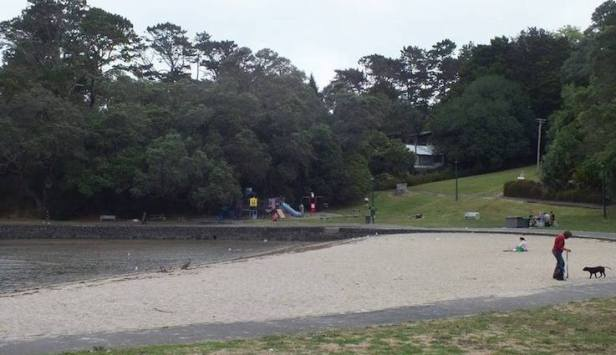 Blockhouse Bay Beach Reserve playground.jpg